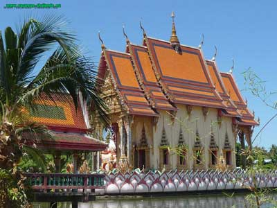 Many beautiful Buddhist temples on Koh Samui in Thailand